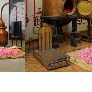Parfémy a jejich historie včetně Chanel No. 5
