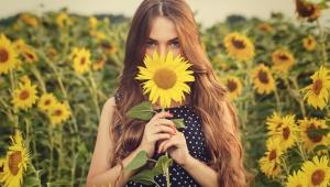 Zábal ze žloutku a slunečnicového oleje na suché konečky vlasů