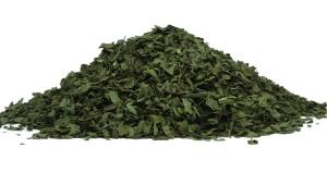 Zeleným čajem proti stárnutí a nadváze