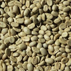 Zelená káva – zázračný přípravek na hubnutí nebo podvod?