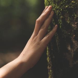Objevte výhody klubu Yves Rocher, vyhrajte balíček a pomáhejte přírodě