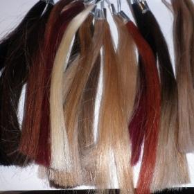 Vzorkovník vlasů - foto č. 1
