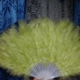 Péřový vějíř - světle zelený - foto č. 1