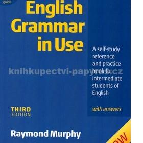 English Grammar in Use - foto č. 1