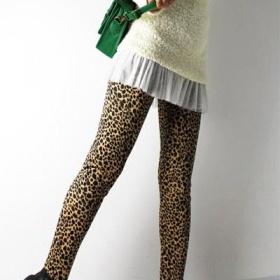 N�jak� leopard� leg�ny - foto �. 1