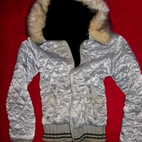 Stříbrná zimní bunda Fishbone - foto č. 1