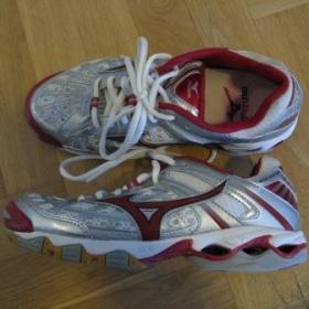 Sálové boty Mizuno