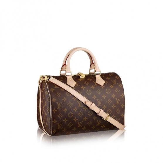 Louis Vuitton Neverfull MM nebo Speedy 30  - Diskuze Omlazení.cz 49678a12e24