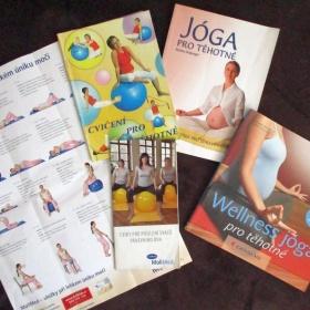 Cvičení/jóga pro těhotné - cena za vše