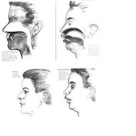 Podbradek - myofunkční terapie, dýchání ústy, poloha jazyka